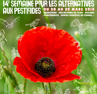petite-banniere-alternatives-pesticides